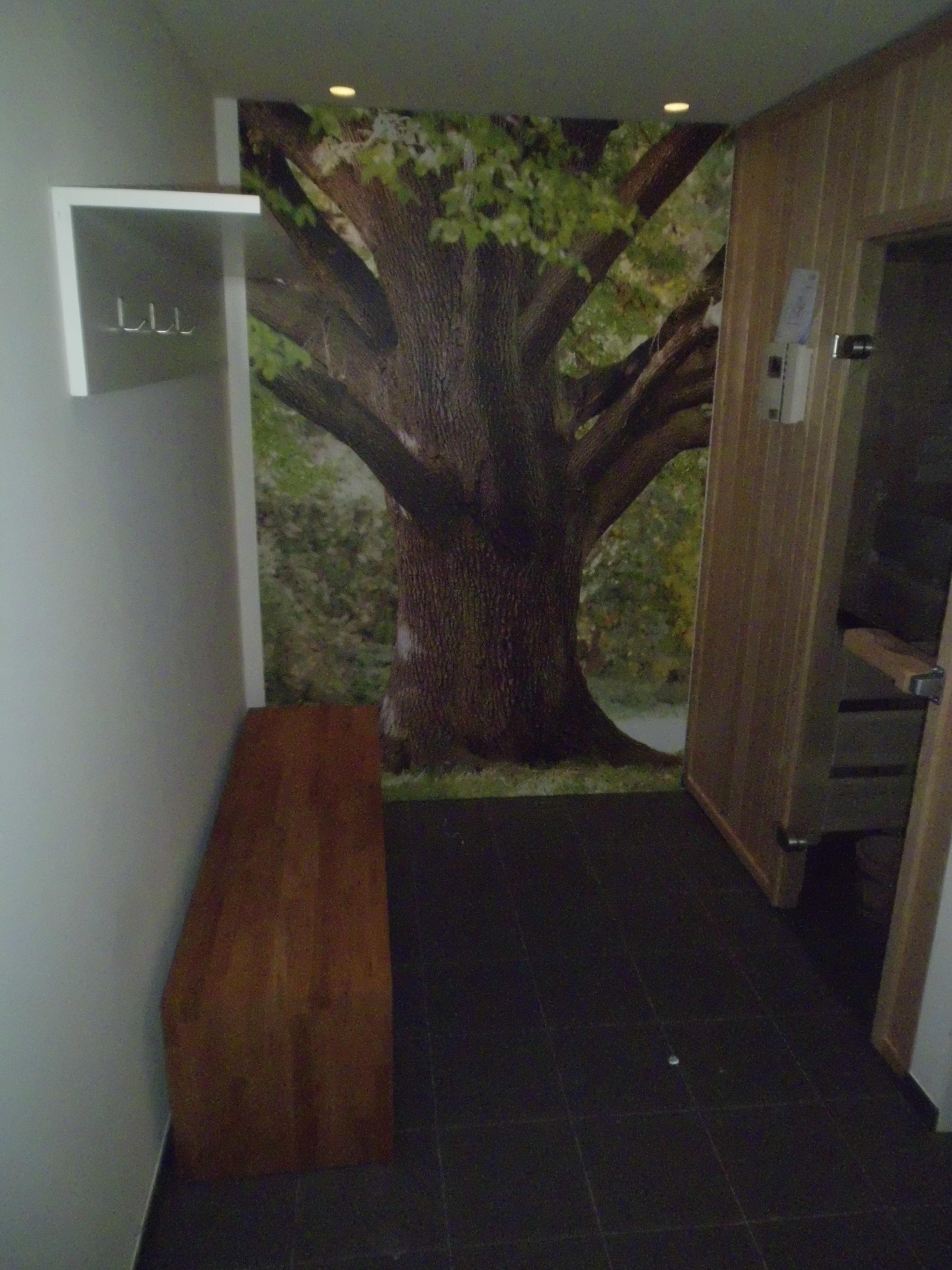 Vorraum zur Sauna mit Bild und Garderobenbrett